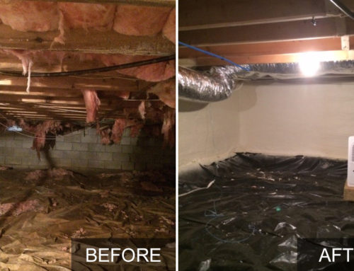 Crawl Space Insulation & Conditioning